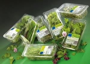 Embalagem frutas verduras legumes prazo de validade